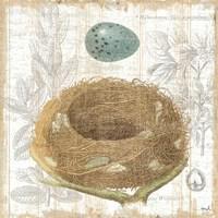 Botanical Nest III Fine-Art Print
