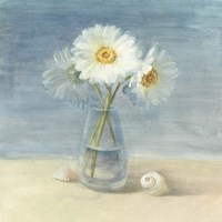 Daisies and Shells Fine-Art Print