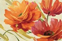 Flamboyant III Fine-Art Print