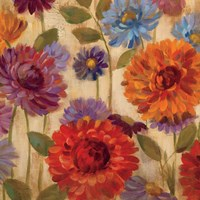 Rainbow Dahlias Crop II Fine-Art Print