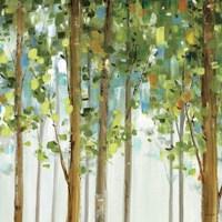 Forest Study II Fine-Art Print