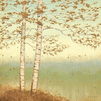 Golden Birch I with Blue Sky Fine-Art Print