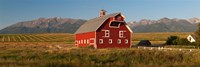 Barn in a field with a Wallowa Mountains in the background, Enterprise, Wallowa County, Oregon, USA Fine-Art Print