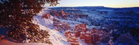 Snow in Bryce Canyon National Park, Utah, USA Fine-Art Print