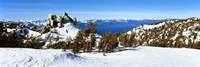 Trees on a snow covered landscape, Heavenly Mountain Resort, Lake Tahoe, California-Nevada Border, USA Fine-Art Print