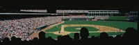 The Ballpark in Arlington Fine-Art Print
