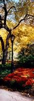 Lamppost in a park, Central Park, Manhattan, New York City, New York, USA Fine-Art Print