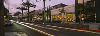 Stores on the roadside, Rodeo Drive, Beverly Hills, California, USA Fine-Art Print