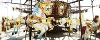 Close-up of carousel horses, Coney Island, Brooklyn, New York City, New York State, USA Fine-Art Print