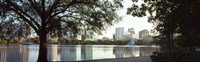 Lake Eola, Orlando, Florida (black & white) Fine-Art Print