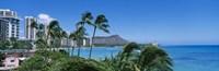 Palm Trees On The Beach, Waikiki Beach, Honolulu, Oahu, Hawaii, USA Fine-Art Print