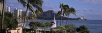 Palm trees on Waikiki Beach, Oahu, Honolulu, Hawaii Fine-Art Print