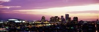 Phoenix with Purple Sky Fine-Art Print