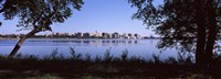 Lake Monona and Madison, Wisconsin Through the Trees Fine-Art Print