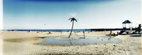Palm tree sprinkler on the beach, Coney Island, Brooklyn, New York City, New York State, USA Fine-Art Print