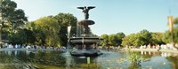 Fountain in a park, Central Park, Manhattan, New York City, New York State, USA Fine-Art Print