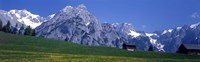 Field Of Wildflowers With Majestic Mountain Backdrop, Karwendel Mountains, Austria Fine-Art Print