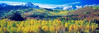 San Juan Mountains, Colorado, USA Fine-Art Print