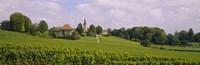 WIne country with buildings in the background, Village near Geneva, Switzerland Fine-Art Print