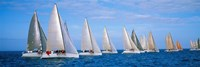 Yachts in the ocean, Key West, Florida, USA Fine-Art Print