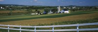 Amish Farms, Pennsylvania Fine-Art Print