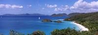 Trees on the coast, Trunk Bay, Virgin Islands National Park, St. John, US Virgin Islands Fine-Art Print