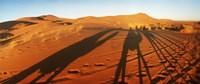 Shadows of camel riders in the desert at sunset, Sahara Desert, Morocco Fine-Art Print