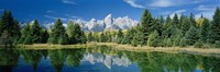 Reflection of trees in water with mountains, Schwabachers Landing, Grand Teton, Grand Teton National Park, Wyoming, USA Fine-Art Print