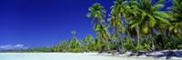 Beach With Palm Trees, Bora Bora, Tahiti Fine-Art Print