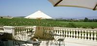 Vineyards Terrace at Winery Napa Valley CA USA Fine-Art Print