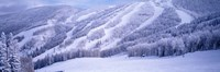 Mountains, Snow, Steamboat Springs, Colorado, USA Fine-Art Print