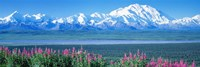Mountains & Lake Denali National Park AK USA Fine-Art Print