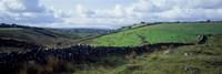 Stone wall on a landscape, Republic of Ireland Fine-Art Print