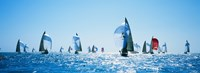 Sailboat Race, Key West Florida, USA Fine-Art Print