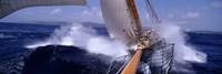 Yacht Race, Caribbean Fine-Art Print