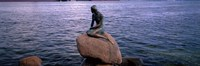 Little Mermaid Statue on Waterfront Copenhagen Denmark Fine-Art Print