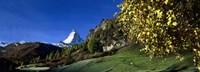 Low angle view of a snowcapped mountain, Matterhorn, Valais, Switzerland Fine-Art Print