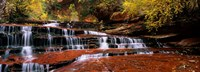 Waterfall in a forest, North Creek, Zion National Park, Utah, USA Fine-Art Print