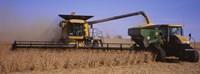 Combine harvesting soybeans in a field, Minnesota Fine-Art Print