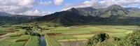 High angle view of a field with mountains in the background, Hanalei Valley, Kauai, Hawaii, USA Fine-Art Print