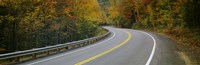 Road passing through a forest, Winding Road, New Hampshire, USA Fine-Art Print