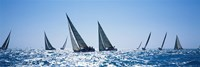 Sailboats racing in the sea, Farr 40's race during Key West Race Week, Key West Florida, 2000 Fine-Art Print