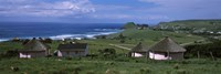 Thatched Rondawel huts, Hole in the Wall, Coffee Bay, Transkei, Wild Coast, Eastern Cape Province, Republic of South Africa Fine-Art Print