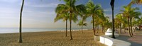 Palm trees on the beach, Las Olas Boulevard, Fort Lauderdale, Florida, USA Fine-Art Print