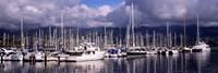 Boats at a harbor, Santa Barbara Harbor, Santa Barbara, California, USA Fine-Art Print