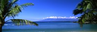 Palm trees on the beach, Kapalua Beach, Molokai, Maui, Hawaii, USA Fine-Art Print