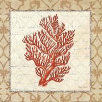 Coral Beauty Light I Fine-Art Print