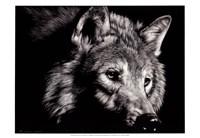 Wild Eyes Fine-Art Print