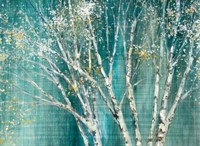 Blue Birch Fine-Art Print