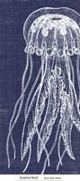 Denim Washed Jellyfish Fine-Art Print